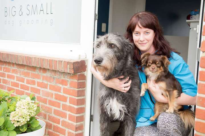 hondentrimmers Antwerpen Big & Small dog grooming